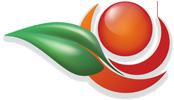 WordPress Example – 0